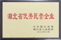 程力湖北省优选民营企业证书